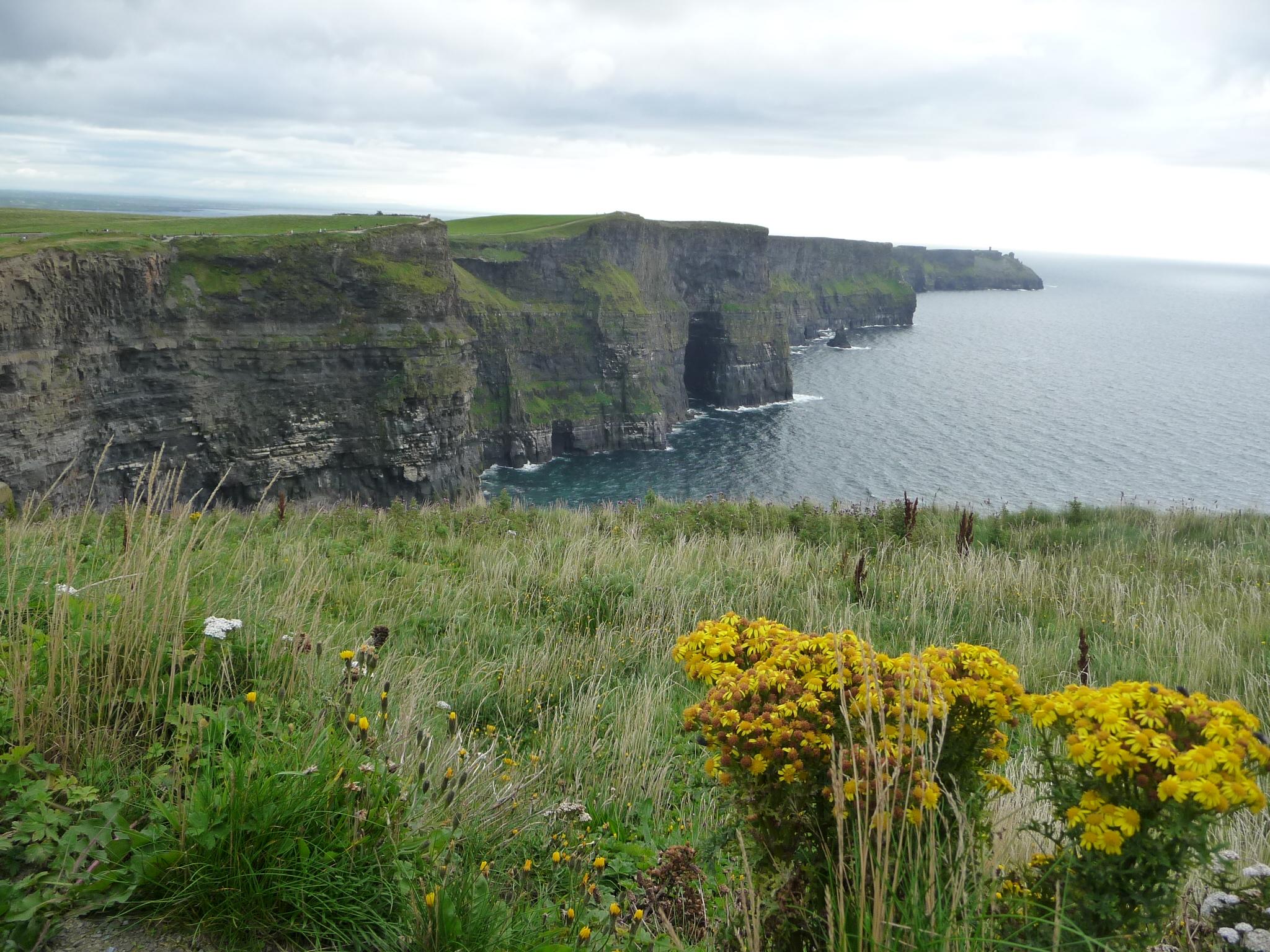 Irsko Mundo (1)