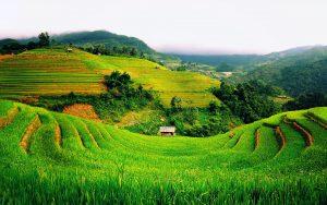 vietnam-desktop-backgrounds_120523444_111
